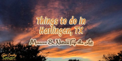 A sub-tropical climate, with average winter lows in the 50s, means year-round outdoor activities. Museums top the list of indoor things to do in Harlingen. #travel #texas #harlingen #museums #birding
