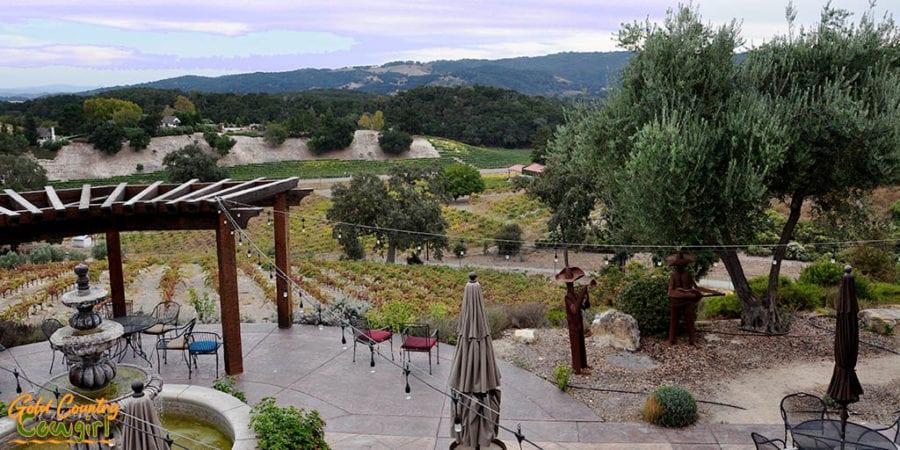 View from Croad Vineyards tasting room