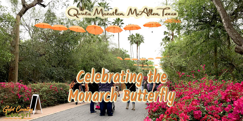 Quinta Mazatlan Celebrates the Monarch Butterfly