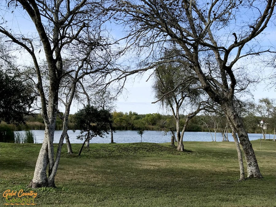 Lake and trees at Wildnerness Lakes RV Resort - a favorite part of my epic 40-day California to Texas RV itinerary