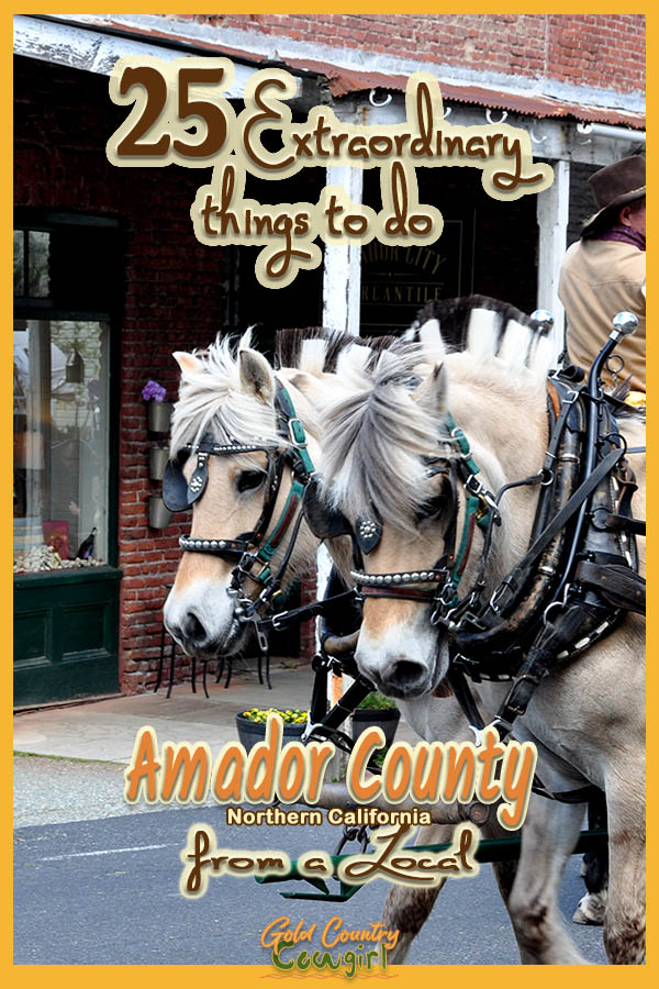 team of fijords with text overlay: 25 extraordinary things to do Amador County Northern Californa from a local