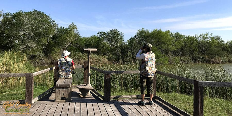 birders on overlook birding at Estero Llano Grande