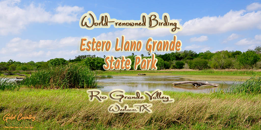 Ibis Pond at Estero Llano Grande State Park with text overlay: World-renowned birding