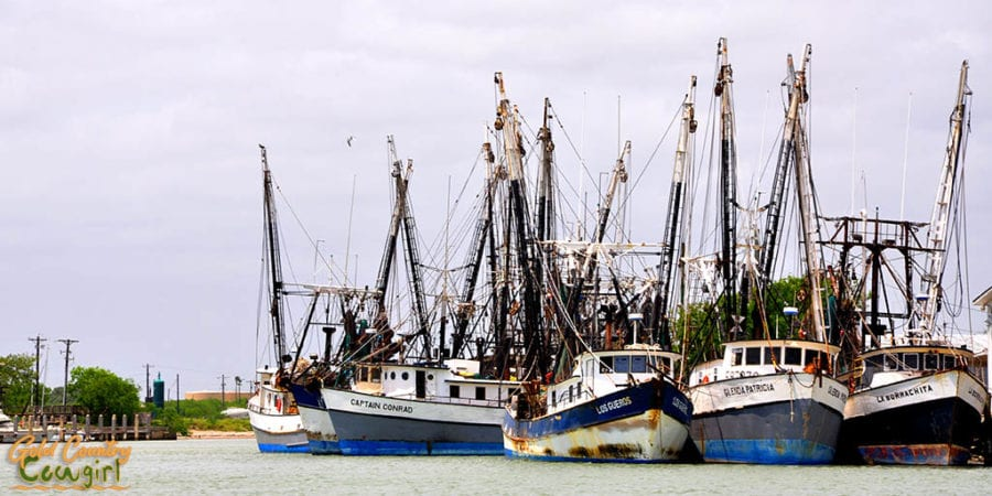 fleet of shrimping boats
