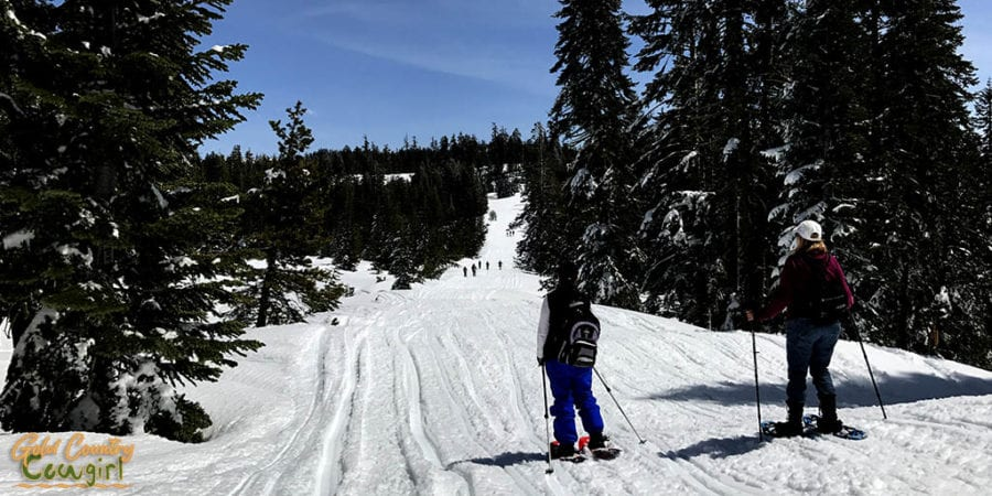 Snowshoeing at Iron Mountain Sno-Park