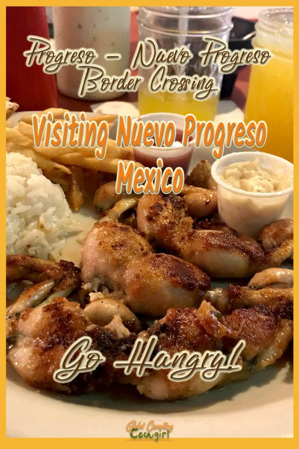frog legs with sides and text overlay: Visiting Nuevo Progreso Mexico