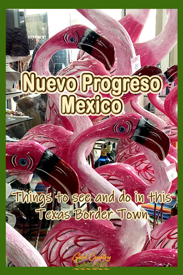 pink flamingo statues with text overlay: Nuevo Progresso Things to see and do in this Texas Border Townngo statute with text overlay: