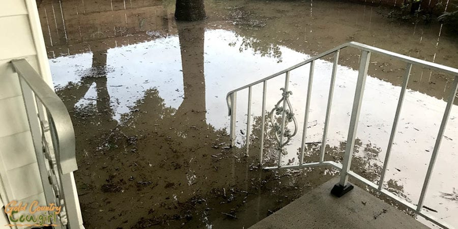 floodwater in yard coming up to top third step