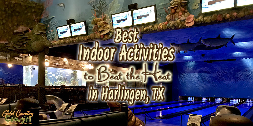 Indoor Activities in Harlingen - When it's just too hot outside!