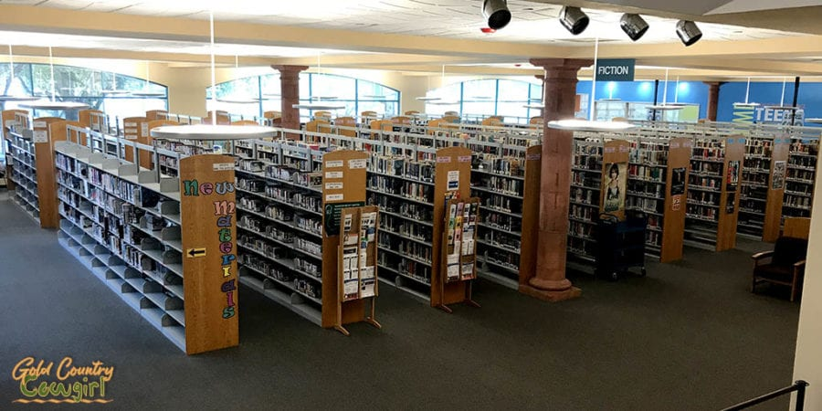 rows of books at Harlingen Library - a mind expanding indoor activity in Harlingen