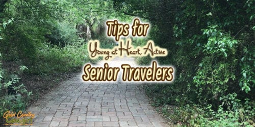 brick path with text overlay: Tips for young at heart, active senior travelers