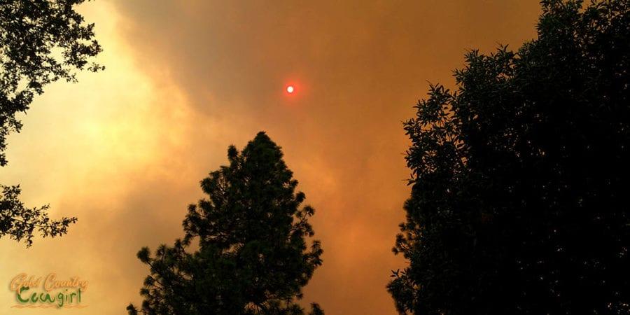 very orange sun glowing through dark smoke clouds from a wildfire