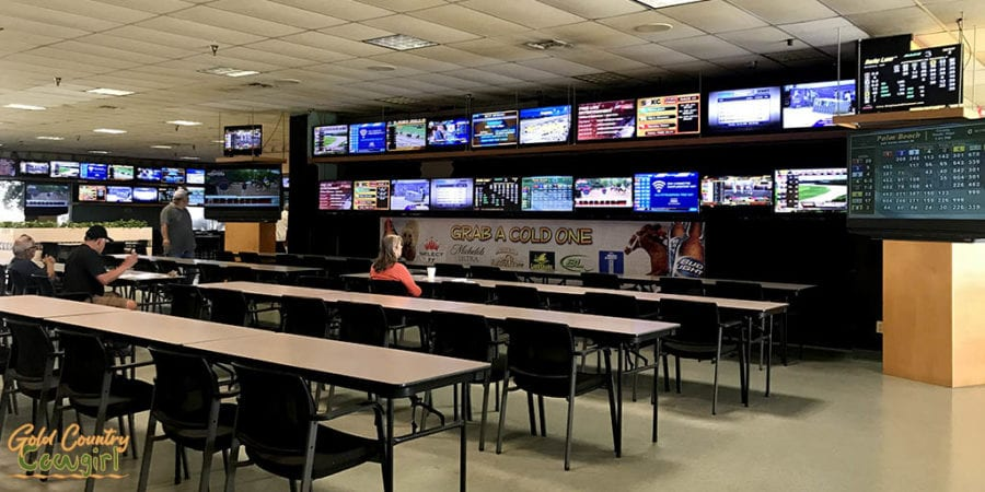 a section of simulcast screens at Valley Race Park - a unique indoor activity in Harlingen