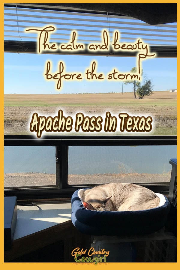 cat sleeping in the sun in front of a view through the window with text overlay: The calm and beauty before the storm! Apache Pass in Texas
