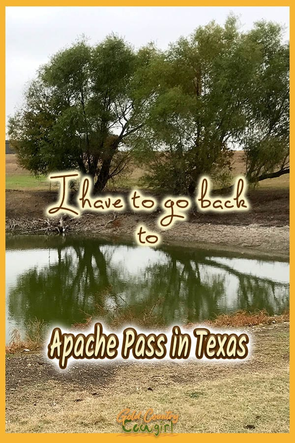 trees reflected in the pond with text overlay: I have to go back to Apache Pass in Texas