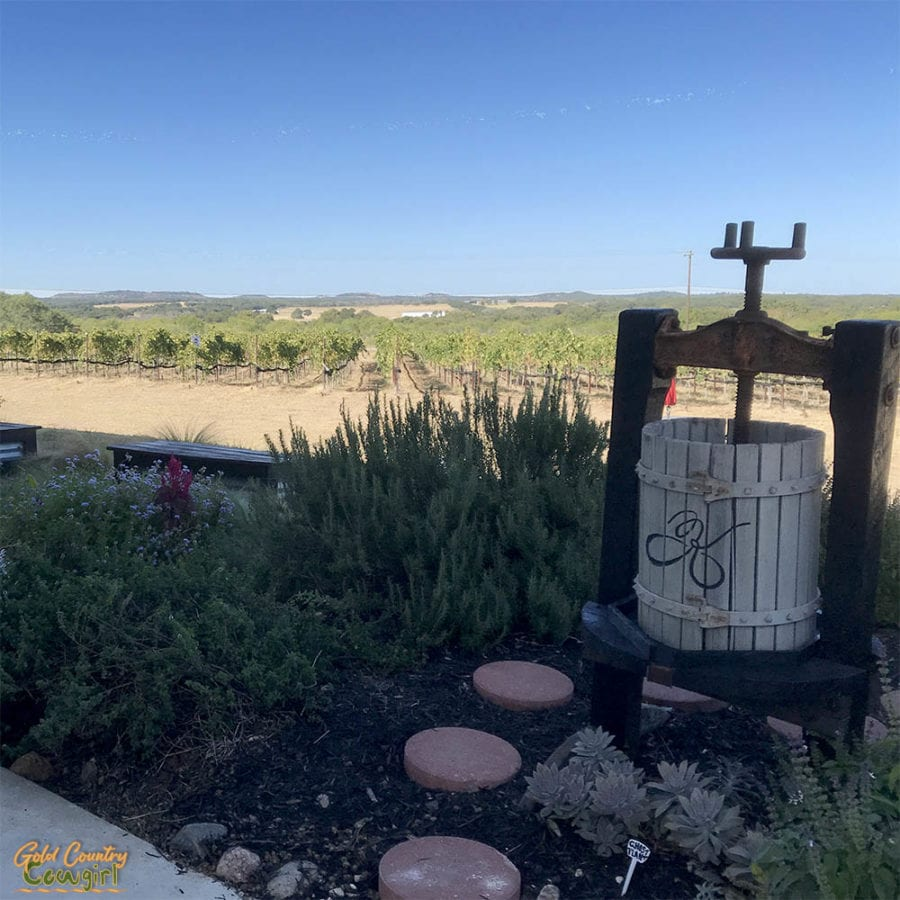 view from Kuhlman Cellars in Texas Hill Country