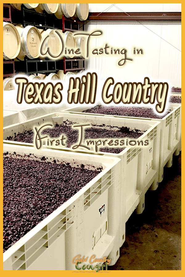 fermenting grapes with text overlay: Wine tasting in Texas Hill Country first impressions