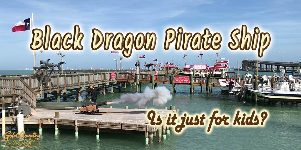 harbor scene with canon firing with text overlay: Black Dragon Pirate Ship Is it just for kids?