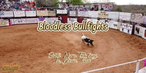 bull in arena with text overlay: Bloodless Bullfights, Santa Maria Bullring, La Gloria, Texas