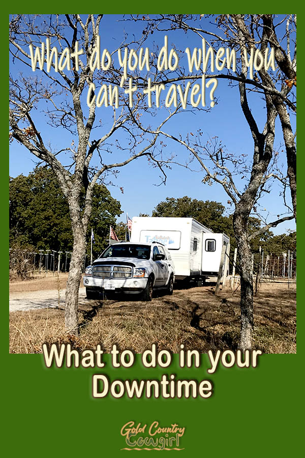 travel trailer parked among the trees with text overlay: What do you do when you can't travel: What to do in your downtime