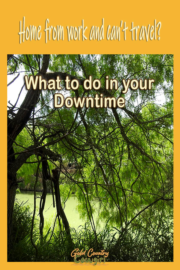 nature scene with text overlay: Home from work and can't travel? What to do in your downtime
