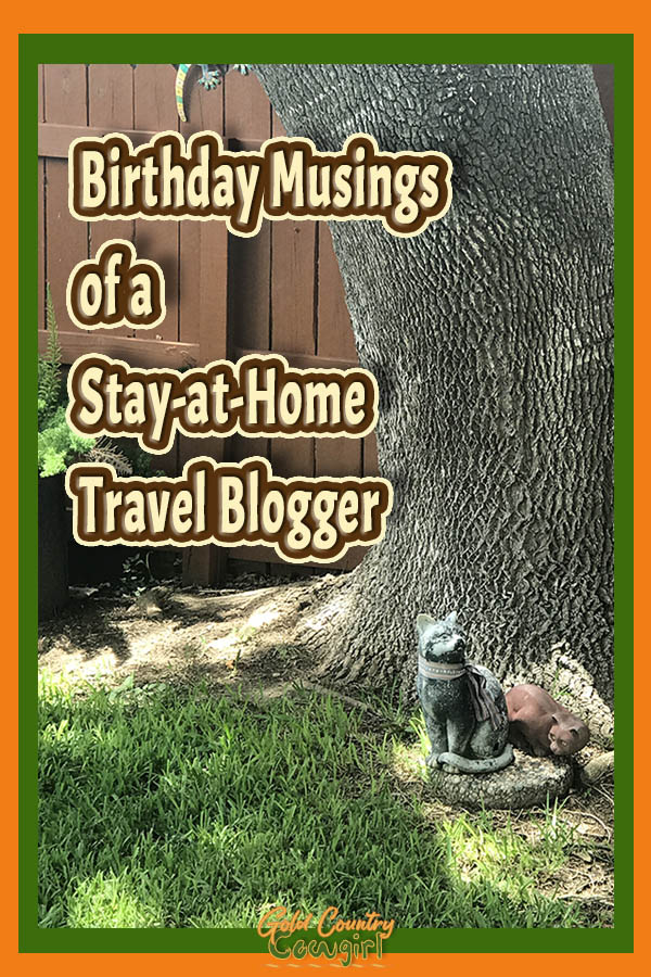grass and tree trunk with text overlay: Birthday usings of a Stay-at-Home Travel Blogger