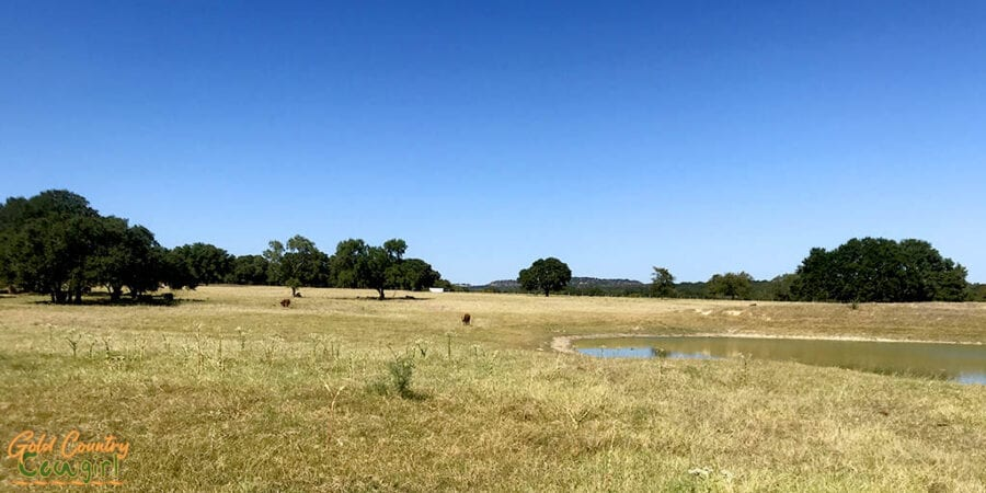 pasture at Lyndon B. Johnson National Historical Park