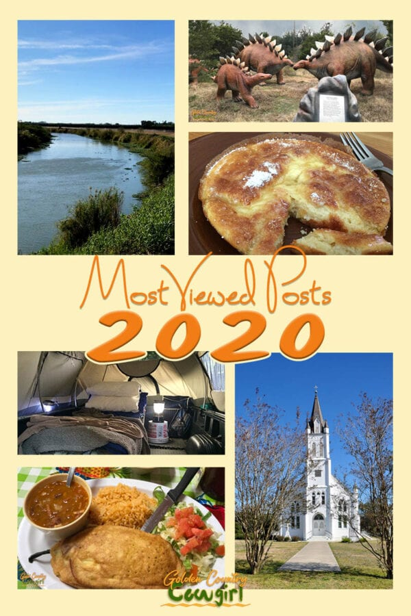 Collage of photos with text overlay: Most Viewed Posts 2020